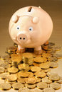 австралийские деньги банка piggy Стоковые Фотографии RF
