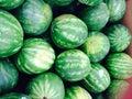 арбузы Стоковые Фото
