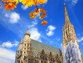 вена st stephan собора Стоковые Фото