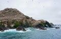 верхняя часть горы с птичьим запове ником на островах Стоковое Изображение