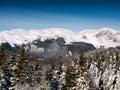 гора doamnele Стоковая Фотография RF