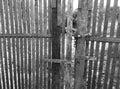 еревянное строба старое Стоковые Фотографии RF