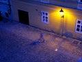 лампа стены в у ице Стоковые Фото