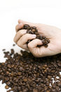лить руки кофе фасолей Стоковое Изображение