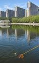пейзаж парка Стоковые Фото