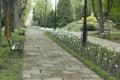 переу ок в парке Стоковая Фотография