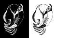 птица toucan Стоковые Изображения RF