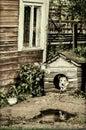 собака в конуре Стоковые Изображения RF
