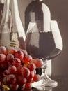 Старое вино. Стоковая Фотография