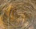сторновка bale круглая Стоковые Фото