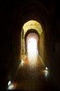 Тоннель в Wat Umong Стоковые Изображения RF