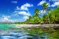 Тропический пейзаж пляжа Стоковая Фотография