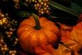 image photo : Fall - Pumpkin Arrangement