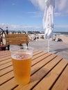 хо о ное пиво на горячий  ень Стоковые Фото