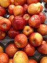 яб оки красные Стоковые Изображения RF