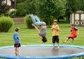 ягнит trampoline Стоковое Изображение