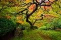 японский к ен Стоковое Изображение