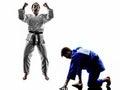 与人剪影战斗的judokas战斗机 库存照片