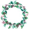 与山楂树莓果 彩的框架 免版税图库摄影