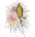 与花的鹦鹉 免版税库存图片