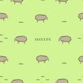 与 羊的无缝的样式 免版税库存图片