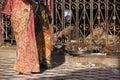 五颜六色的莎丽服的妇女走在克勒妮 玛塔寺庙, deshnok的, 库存照片