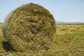 亚伯大打包域干草横向大草原农村夏 时 库存照片