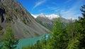 伟大的shavlinskoe湖 库存照片