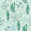 传染媒 手拉的海草种植海 生 库存图片