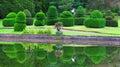 修剪的花园 普perrow树木园赤柏松灌木 免版税图库摄影