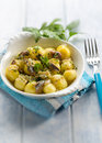 土豆沙拉用鲥鱼葱和荷兰芹,选择聚焦 免版税图库摄影