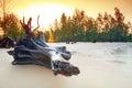 在酸值Kho Khao海滩的惊人的日出  免版税库存照片