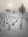 墓地墓石射 了垂 的退伍军人 免版税图库摄影