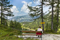 奥地利的自然 免版税库存照片
