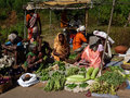 市场出售部族蔬菜每周妇女 免版税库存照片