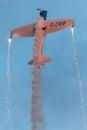 扭转者杂技队 航空器: 个x沈 扭转者 免版税图库摄影