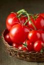 新鲜的红色蕃茄 图库摄影