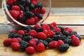新鲜的莓和桑树 库存照片