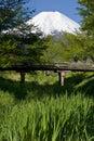 桥梁wooden 库存图片