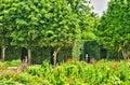 法国,在凡尔赛pa parc的玛丽 安托瓦内特庄园 免版税库存图片
