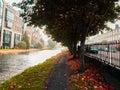浪漫长的路在河附近的秋天 图库摄影