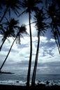 热带夏威夷的海岸线 库存照片