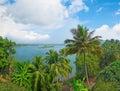 热带河和海岛在它中 goa 免版税图库摄影