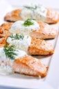 煮熟的三文鱼 免版税图库摄影