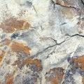 石纹理 列 库存照片