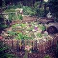 神 的庭院 库存照片