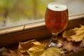 秋天啤酒杯 库存照片