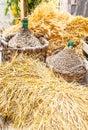 秋天收获篮装的细类颈大坛柳条 免版税库存照片