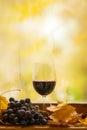 秋天红葡萄酒 库存照片