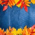 秋天背景在木的空 的复制叶子 库存照片